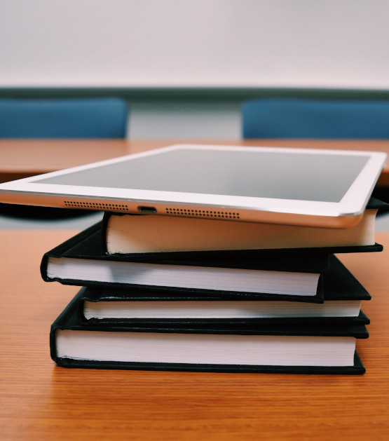 Bibliografía recomendada en las asignaturas