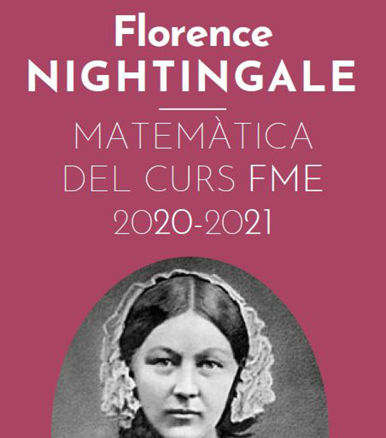 Web Florence Nightingale: matemàtica del curs 2020-2021
