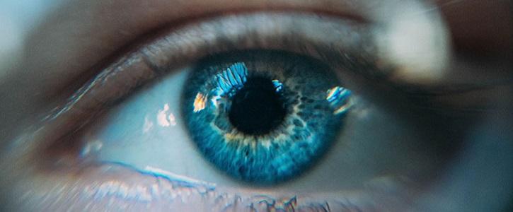 Ciències de la visió