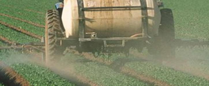 Agri-food engineering