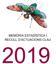Memoria estadística y recopilación de actuaciones clave 2019